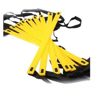 yellowladder1