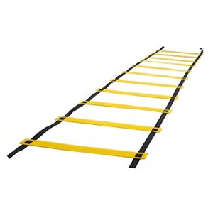 yellowladder4