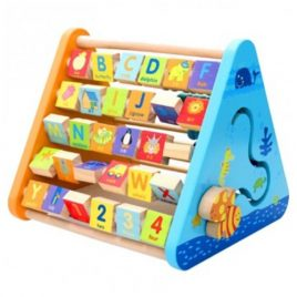 Wooden Five Side Learning Shelf